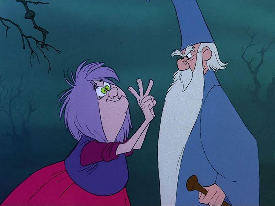 Disney Die Hexe Und Der Zauberer